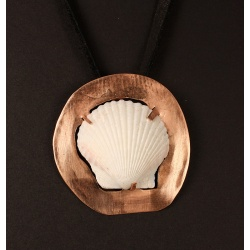 Scallop shell on copper disc